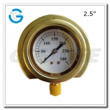 Brass pressure gauges with flange type Bottom connection