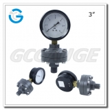 All plastic diaphragm seal pressure gauges