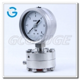 4 Inch flush diaphragm seal pressure gauges